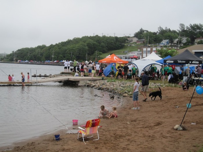 One of the children playing on Lake Banook could get pulled under by the weeds and die, says councillor Darren Fisher. Photo: David Murray, via http://epterranova.blogspot.ca