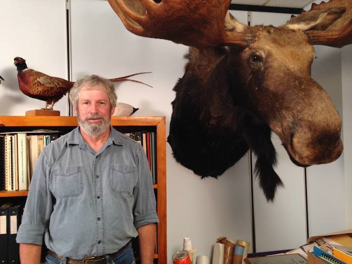 Peter MacDonald, a biologist at the Department of Natural Resources, will talk about moose. Photo: CBC