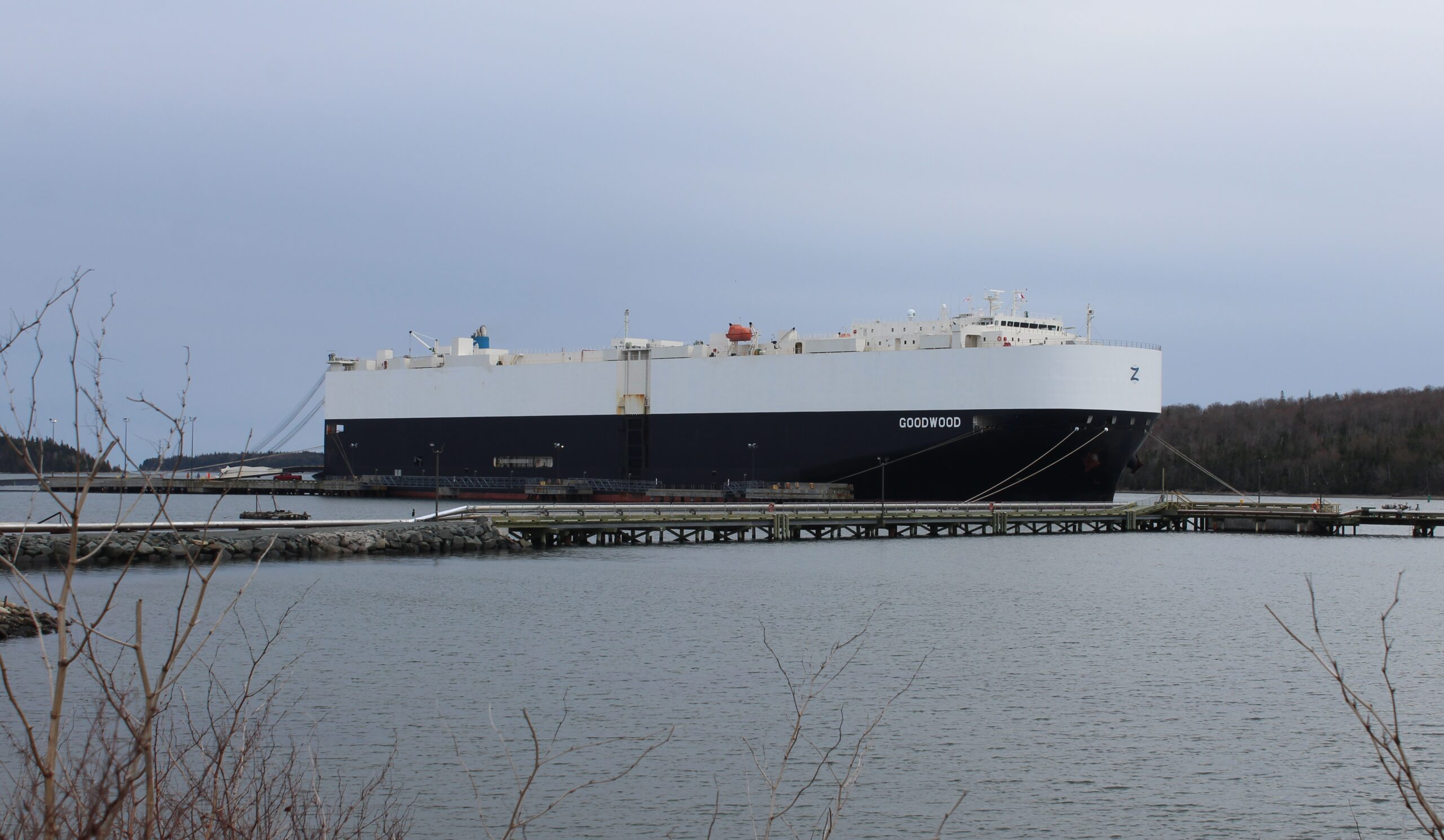 A photo of the car carrier Goodwood, tied up at dock on an overcast day. Its massive hull is painted blue on the bottom, and white on the top.