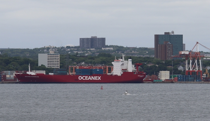 Oceanex Sanderling. Photo: Halifax Examiner