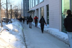 The sidewalks at Dalhousie were completely ice-free. Photo: Halifax Examiner