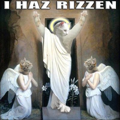cat-jesus-resurrection