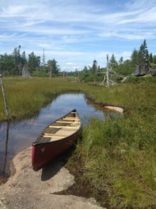 A picture I took while canoeing through Birch Cove Lakes with Chris Miller.