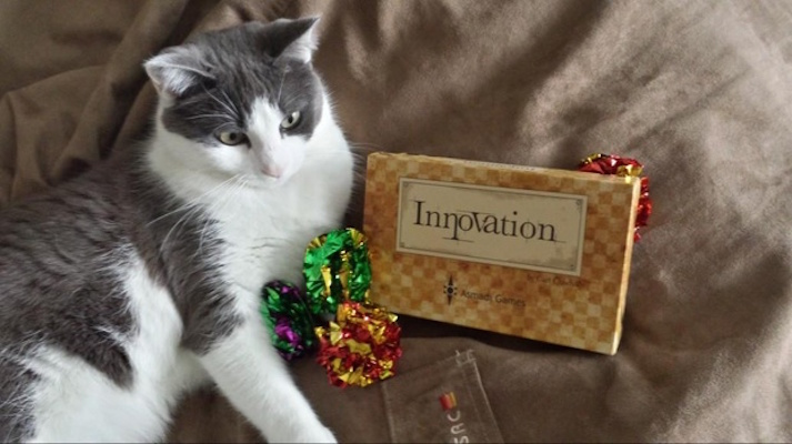 innovation-card-game-and-cat-toys-1371830523