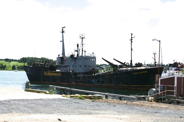 The Farley Mowat in better days.