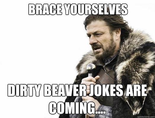 beaver got