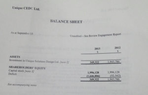 This page of the 2013 financial report filed with the Nova Scotia Security Commission shows that the value of Unique CEDC's investment in Unique Solutions has been devalued by over $1.6 million.