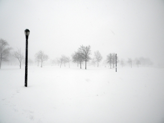 2010_Blizzard_White_out_NYC