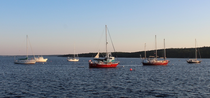 The view of Shelburne Harbour from the deck of The Sea Dog restaurant/ bar. Photo: Halifax Examiner