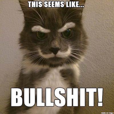 bullshit cat
