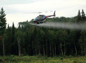 Aerial application of glyphosate. Photo courtesy of the Canadian Forest Service.