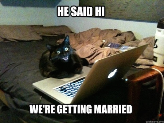 cat married