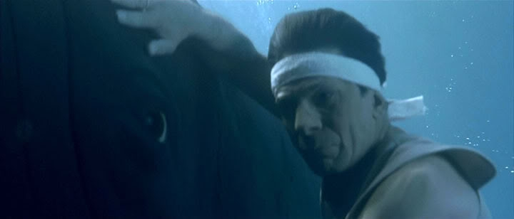 Spock mind-melds with a whale in Star Trek iV: The Journey Home.