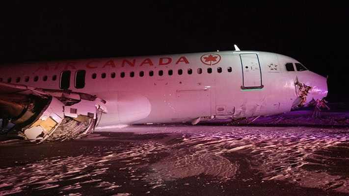 The 138 people on board Flight 624 survived not only the crash into a runway at the Halifax airport, but also marauding skunks, racoons, and bears.