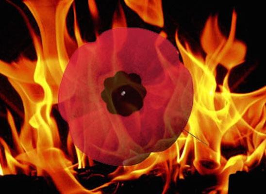 poppy-flames