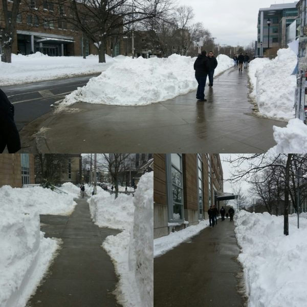 Photos of Dalhousie sidewalks and curb cuts on February 15, 2017 showing cleared to bare pavement.