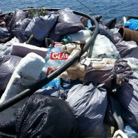 Blue Urbanism project shines a light on our harbour trash problem