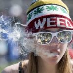 Halifax council passes stupid and overreaching cannabis restrictions