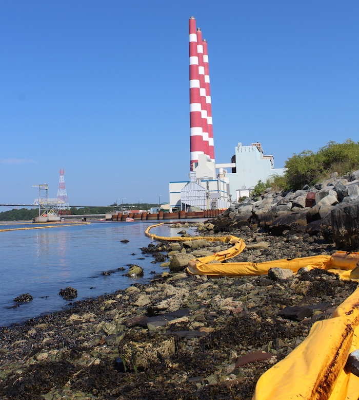 A photo of oil booms along the shoreline near the Tufts Cove power plant