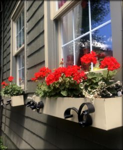 Window boxes with geraniums