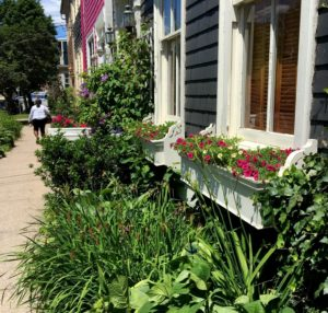 Window boxes and mini-gardens