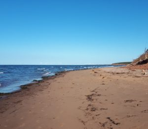 Deserted beach on the North Shore of PEI