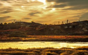 Evening landscape at the Peggys Cove Barrens