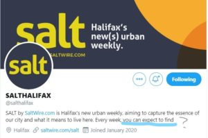 Twitter profile page of the newspaper SALT