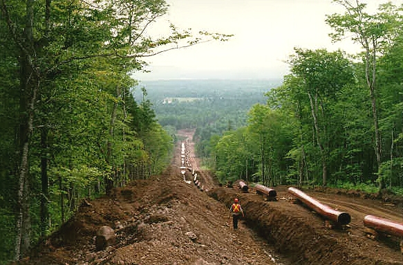 Land cleared for a pipeline