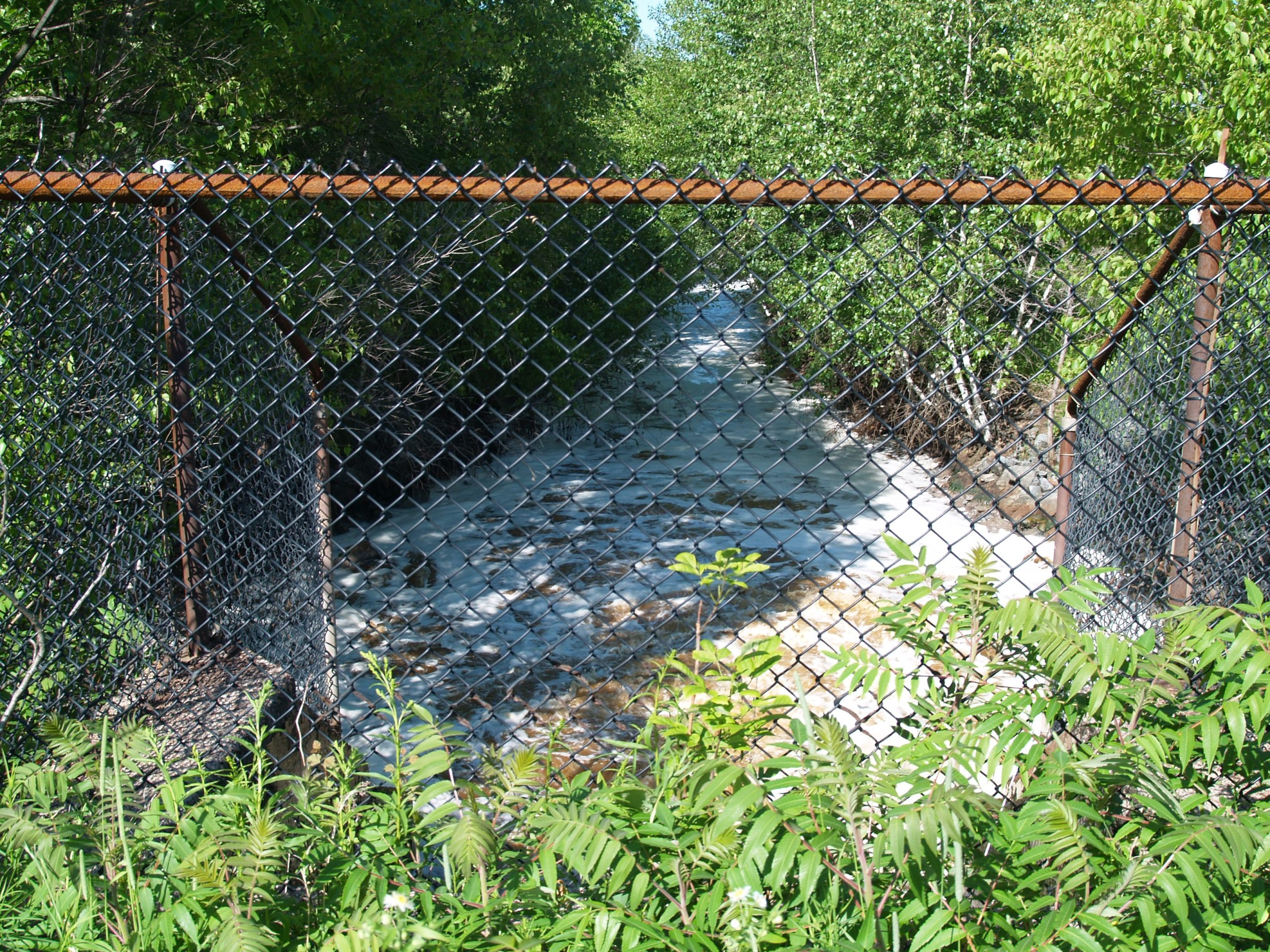 Effluent currently flows thru a pipe from the mill to Boat Harbour