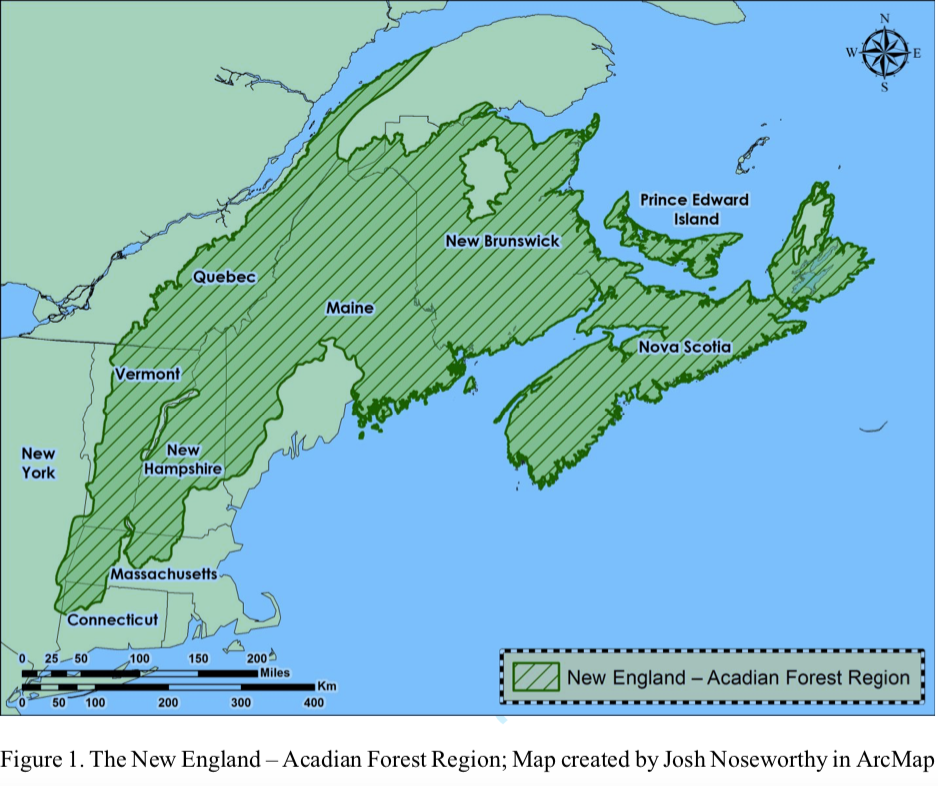Map by Joshua Noseworthy of the Acadian Forest region