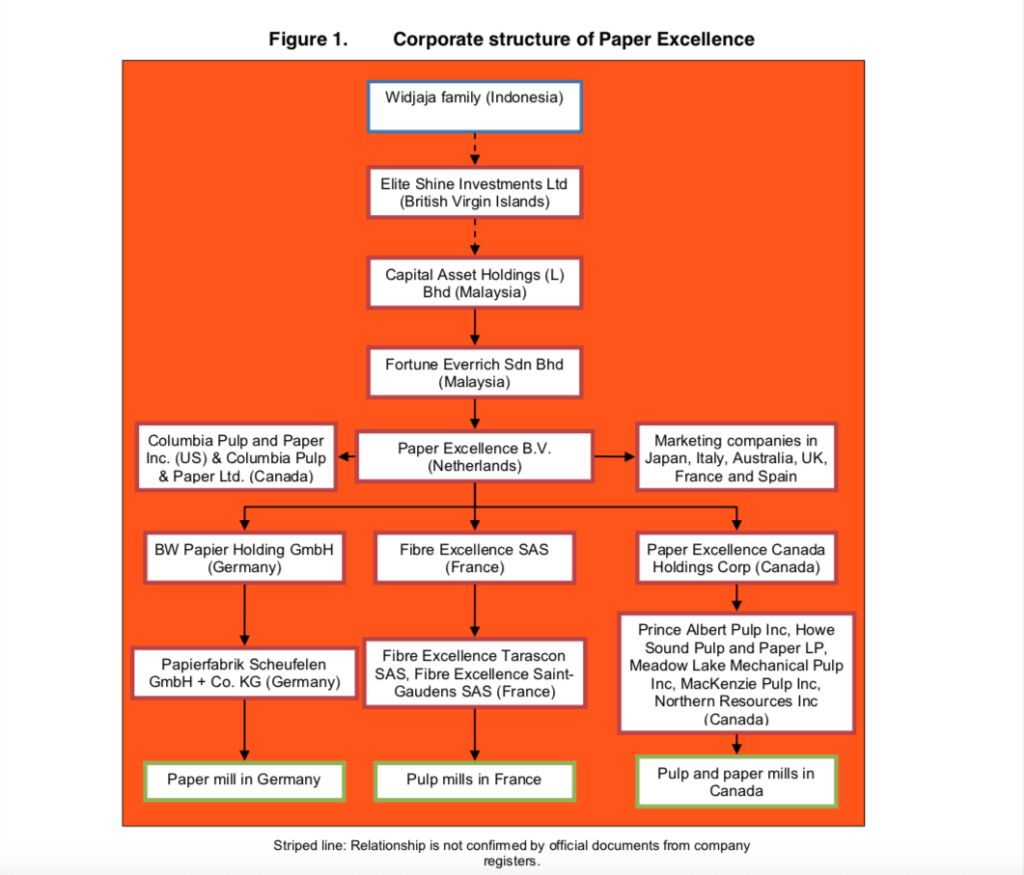 Corporate structure of Paper Excellence from Greenpeace report