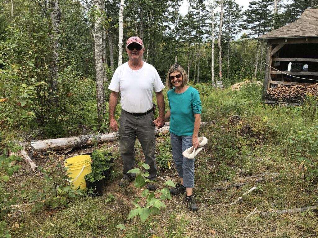 Doug and Pat Kemp with seedlings in their Acadian forest restoration project. Photo: Joan Baxter