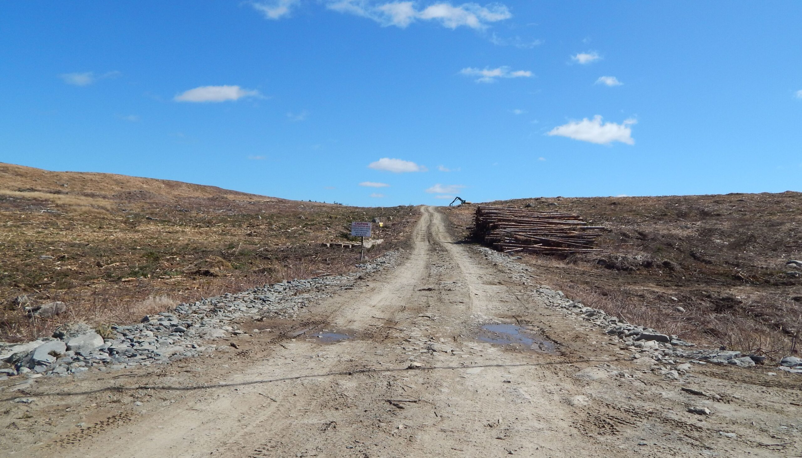 A dirt road through scrabbly wilderness