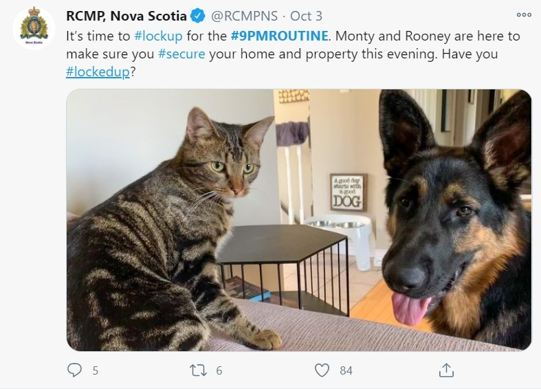 Tweet from RCMP NS with a cute cat and dog urging people to lock their doors.