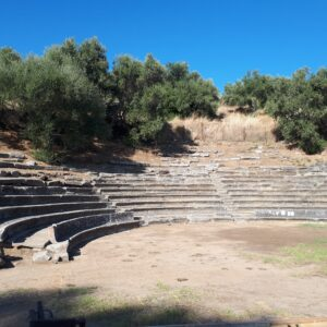 Ancient amphitheatre with olive trees in background.