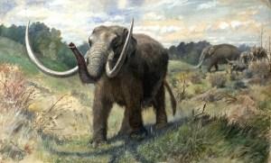 A mastodon