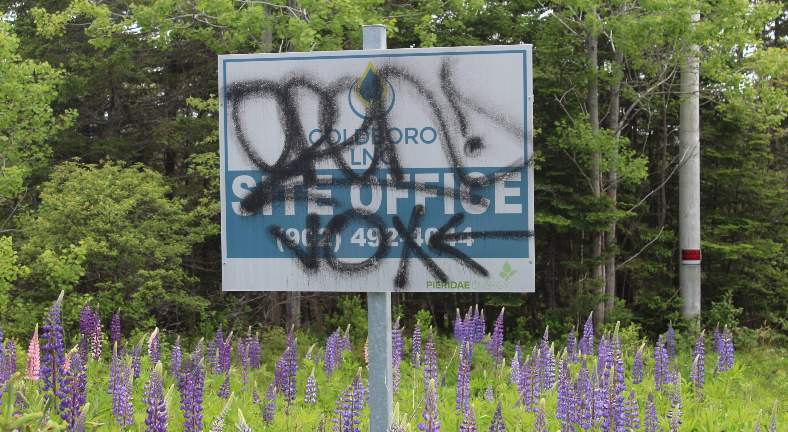 """A sign for the Goldboro site office, on which is spray painted graffiti in black. One word looks like a tag, the other is """"vox"""" with an arrow."""