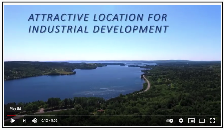 """A screenshot of a video which shows a lovely vista of forest and water on a clear summer day. the text superimposed on a clear blue sky reads, """"Attractive location for industrial development"""" in capital letters."""