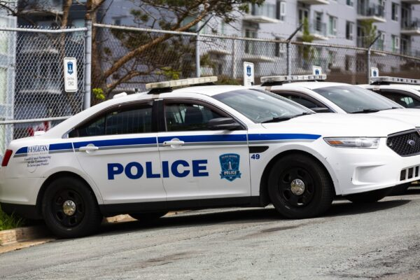 Halifax Regional Police cruisers lined up behind headquarters on Gottingen Street in June 2021. They're so shiny and white.