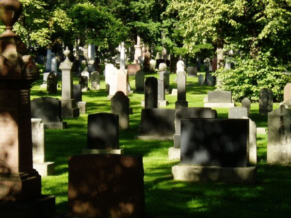 Gravestones in a cemetery are seen in dappled light on a sunny day under full foliage.