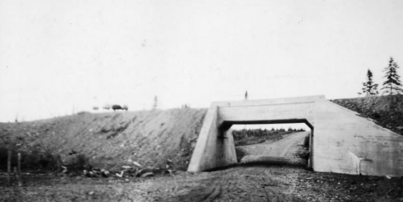 Black and white photo of sheep on an old railway bridge