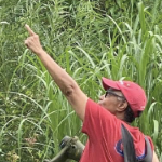 Evelyn White, wearing a red cap and Tshirt, pointing to where she saw a cardinal in her lush green backyard garden.