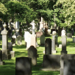 Gravestones in Camp Hill Cemetery in dappled sunlight on a summer day.