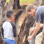A boy and a man collect a water sample from a cement bore holeamongst some dead tree trunks in Namibia.